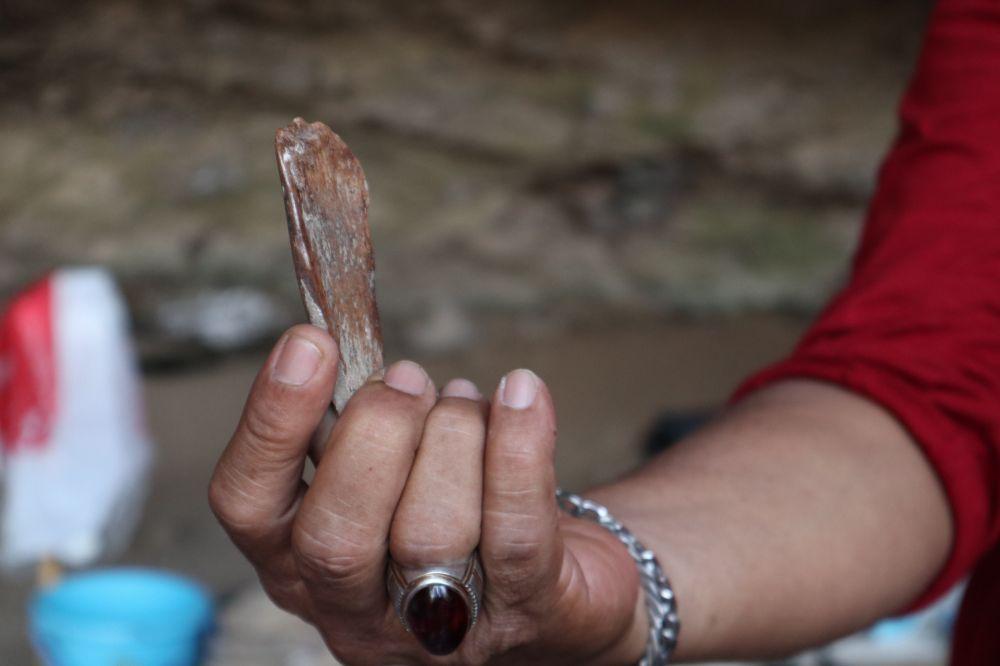 Tim Pusat Penelitian Arkeologi Nasional menunjukkan peralatan dari tulang hewan yang diduga milik manusia purba di Gua Lowo Ponorogo