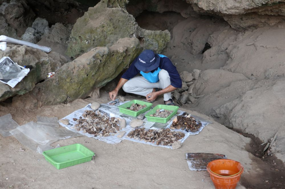 Tim Pusat Penelitian Arkeologi Nasional mengumpulkan peralatan dari tulang hewan dan batu yang diduga milik manusi purba di Gua Lowo Ponorogo