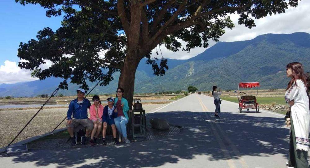 Para wisatawan berfoto ria di bawah pohon besar yang sangat terkenal di tempat wisata ini