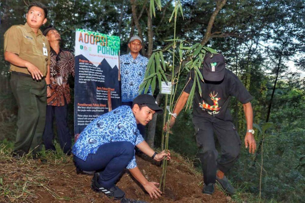 Pohon bambu yang ditanam Bupati Cak Ipin akan disirami sendiri seminggu sekali