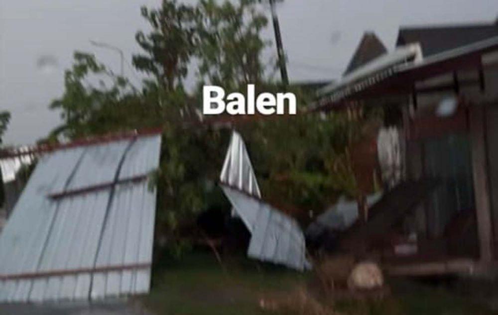 Pohon tumbang di Balen, Bojonegoro