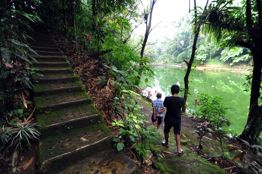 Mengenal Rowo Bayu, Telaga yang Dikaitkan Cerita 'KKN di Desa Penari'