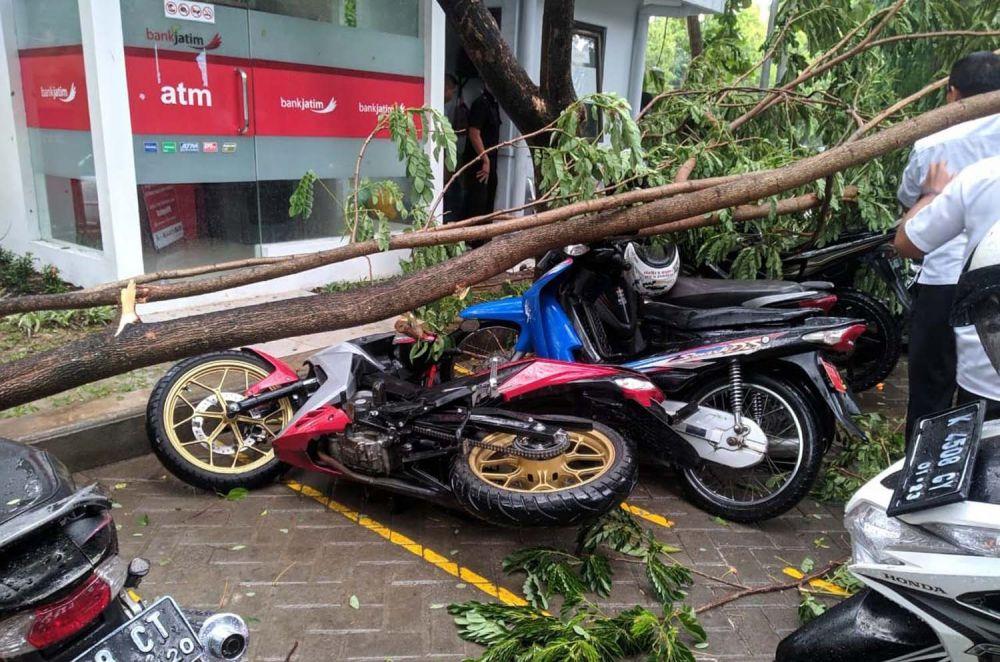 Sejumlah kendaraan yang sedang parkir di depan ATM Bank Jatim di Bojonegoro tertimpa pohon tumbang akibat hujan angin