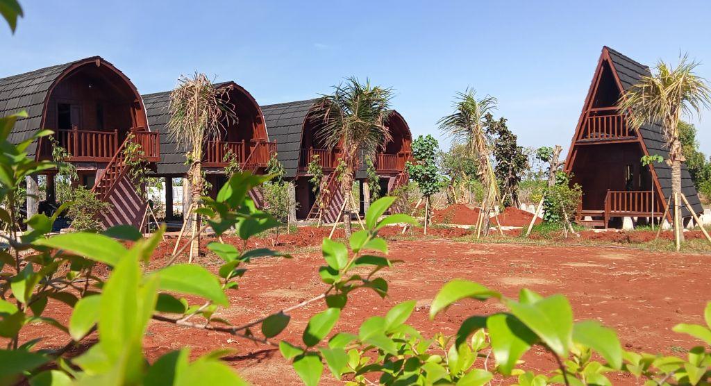 Destinasi wisata Kebun Pak Inggih di Desa Sekapuk, Kecamatan Ujungpangkah, Kabupaten Gresik