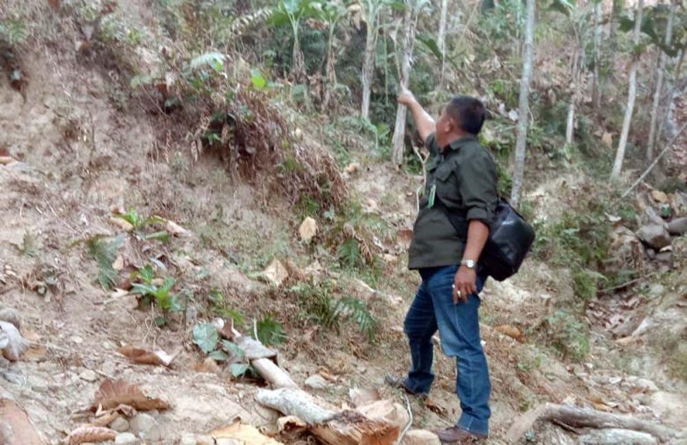 Petugas menunjukkan lokasi diduga tempat macan tutul menampakkan diri