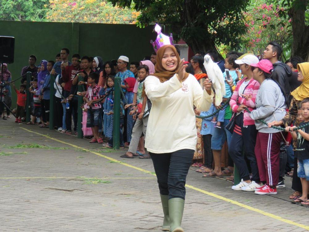 Petugas KBS memberikan edukasi bagi pengunjung