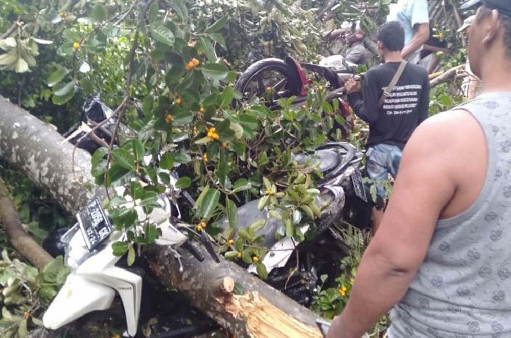 Sejumlah motor juga rusak tertimpa pohon akibat hujan angin di Kota Kediri