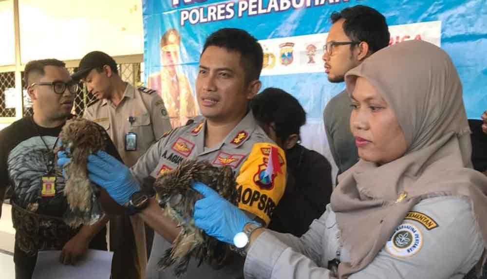Kapolres Pelabuhan Tanjung Perak, AKBP Antonius Agus Rahmanto tunjukkan hewan yang berhasil diamankan