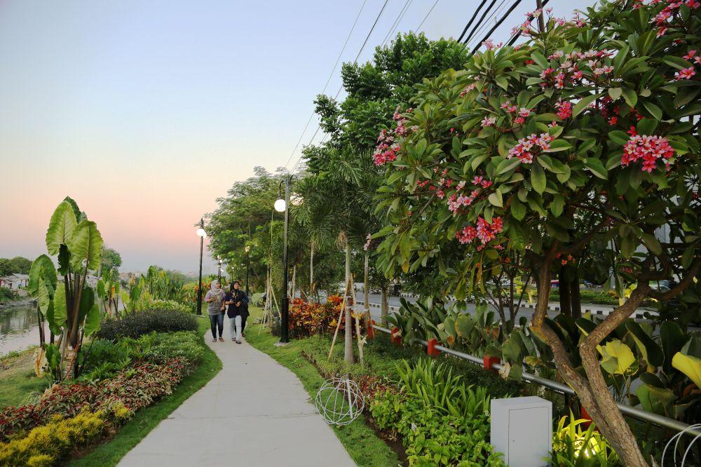 Wilayah di sempadan sungai dimanfaatkan untuk ruang terbuka hijau