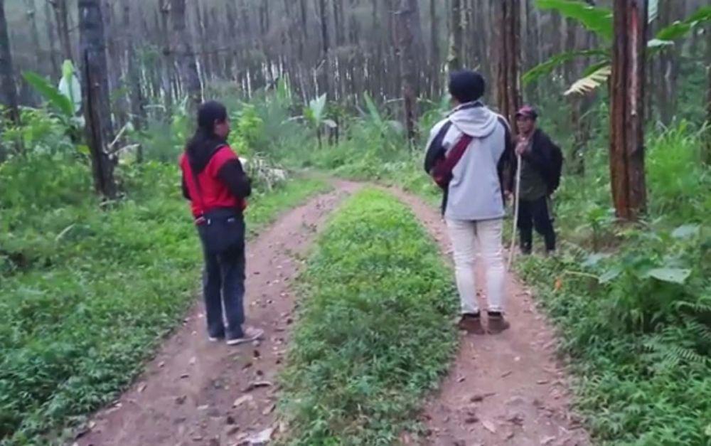 Cerita Horor YouTuber saat Telusuri Lokasi KKN di Desa Penari
