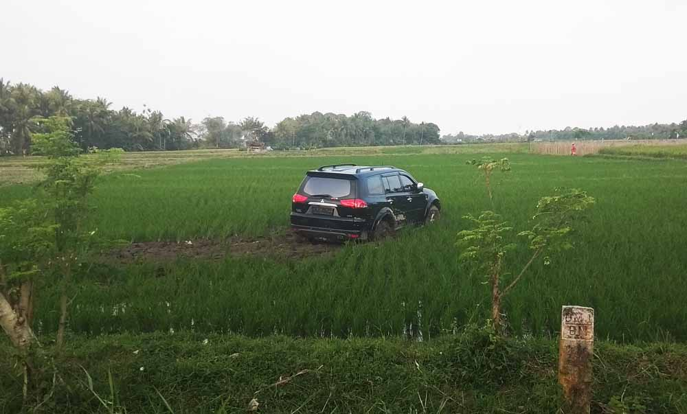 Tabrak Pengendara Motor Mitsubishi Pajero Nyungsep Ke Sawah
